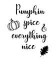 pumpkin spice vector image vector image