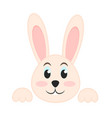 rabbit or bunny cute animal icon image stock vector image vector image