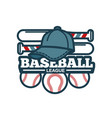 baseball tournament promotional emblem with vector image vector image