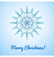 Beautiful large snowflake vector image vector image