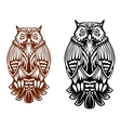 Beautiful owl mascot vector image vector image