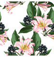 berries with leaves and pink royal lilies vector image vector image