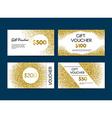 Golden Gift Voucher vector image vector image