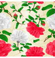 seamless texture red and white flowers camellia vector image vector image
