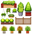 Set of different plants vector image vector image