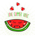 summer poster with watermelon vector image vector image