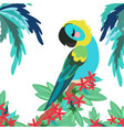 tropical banner with parrot vector image vector image