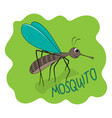 fun cute mosquito gant smile vector image