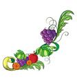 A fruity border vector image