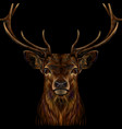 deer realistic colorful hand-drawn portrait vector image