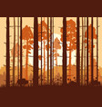 forest sunset mountains silhouettes of pine vector image vector image