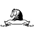 heads horses in profile vector image vector image
