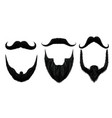 moustache and beard man beards style curly vector image