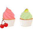 pistachio cupcake and cherry cupcake vector image