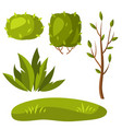 set tree and bushes vector image