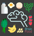 brain food infographic elements vector image