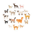 cat icons set cartoon style vector image vector image