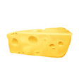cheese 3d realistic vector image