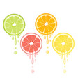 citrus drops juicy lemon grapefruit lime orange vector image