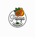 papaya fruit logo round linear slice vector image vector image