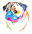 colorful decorative portrait of pug vector image vector image