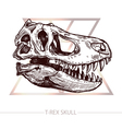 Dinosaur Skull Drawing Of T Rex Skull