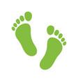 footprint - human foot print vector image vector image