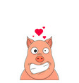 head pig looking hysterical with hearts over vector image
