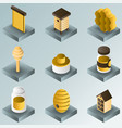 honey color gradient isometric icons vector image