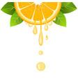 orange slice with juice drops juicy citrus fruit vector image