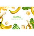 realistic banana frame composition vector image vector image