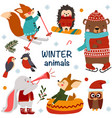 set isolated winter animals vector image vector image