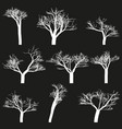 set of white outlines trees black background vector image