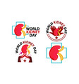 world kidney day template set vector image vector image
