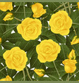 yellow rose and green leaves on white background vector image vector image