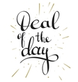 Deal of the day lettering tag vector image vector image