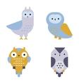Owl wild bird cartoon