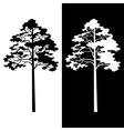 Pine Trees Black and White Silhouettes vector image vector image