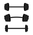 set of barbells black barbells for gym fitness vector image