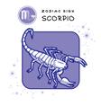 Scorpio Astrology Sign vector image