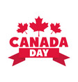 canada day lettering maple leaves ribbon vector image