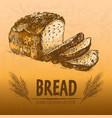 digital color detailed line art bread vector image vector image