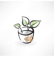 flower in pot grunge icon vector image vector image