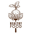 healthy food isolated icon beetroot and leaves vector image