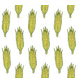 seamless pattern colored hand drawn corn vector image vector image