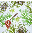 seamless texture christmas pine cones and snow vector image vector image