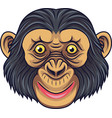 cartoon chimpanzee head mascot vector image