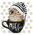 cartoon owl is sitting in a cup coffee vector image vector image