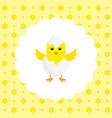 chick in eggshell flat vector image vector image