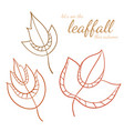 hand drawn set of leaves design vector image